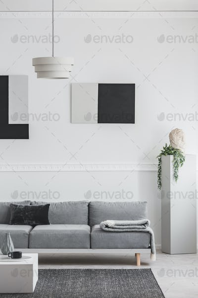 Black and grey paintings on white wall behind comfortable grey couch in elegant living room