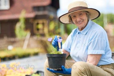 Happy Senior Woman Planting Flowers in Pots