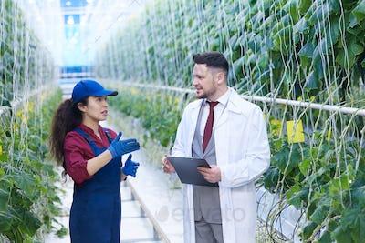 Female Worker Talking to Scientist in Plantation