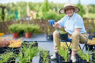 Happy Senior Woman Planting Flowers in Garden