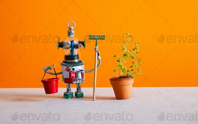 The robotic gardener housekeeping assistant is holding a bucket and a rake