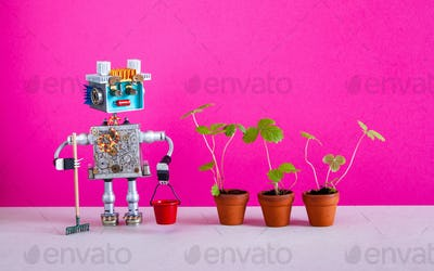 Robotic agriculture automation breeding gardening concept. Robot gardener with rake and red bucket.
