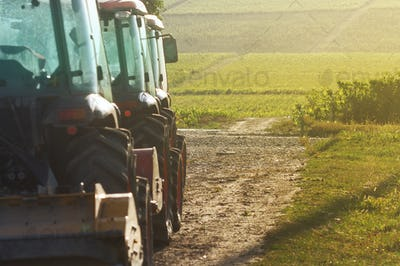 row of agriculture tractors in front of vineyard