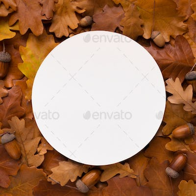 Round Blank space for logo in the middle of dead oak leaves