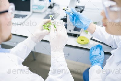 Scientists Doing Research in Laboratory