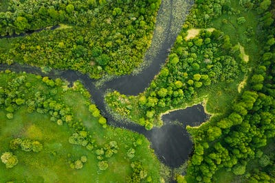 Aerial View. Green Forest, Meadow And River Marsh Landscape In S