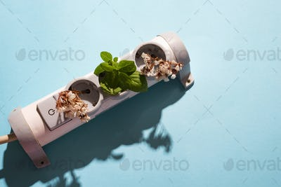 electronic cable plug with green mint and flowers on blue background. Friendly green living. Earth