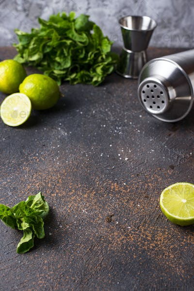 Ingredients for cooking cocktail with shaker