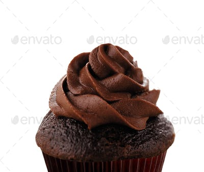 Delicious Chocolate Cupcake isolated