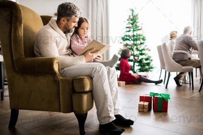 Mature Father Reading Stories  to Girl