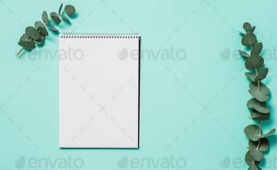 Blank notebook and eucalyptus on blue background