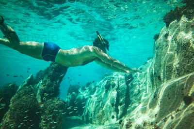 Snorkelling With Fish