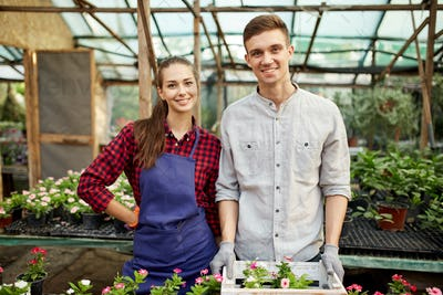 Happy guy and girl gardeners sand next to the pots with flower seedlings in greenhouse on a sunny