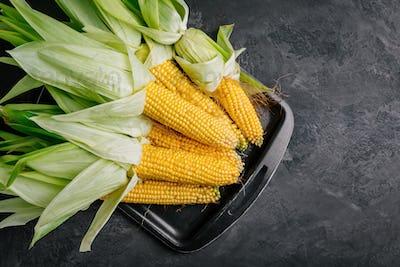 Fresh sweet golden corn on cobs on dark gray stone background