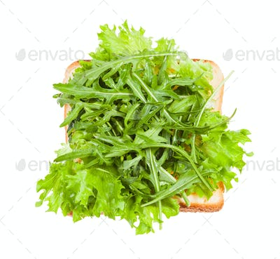 open sandwich with toast and fresh greens