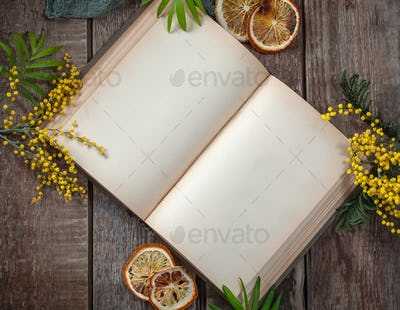 Opened book with blank pages on the old wooden table in the spri
