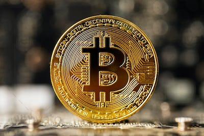 Dark gold bitcoin on crypto mining GPU circuit board computer hardware