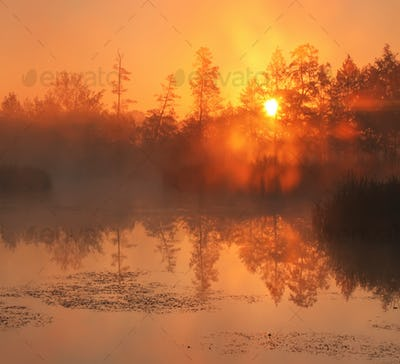 Reflection of the first rays of dawn sunlight