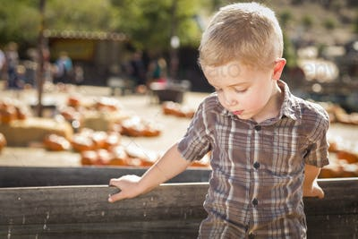 Adorable Sad Little Boy at Pumpkin Patch Farm Standing Against Old Wood Wagon.