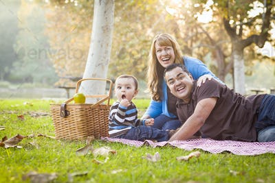 Happy Young Mixed Race Ethnic Family Having a Picnic and Playing In The Park.