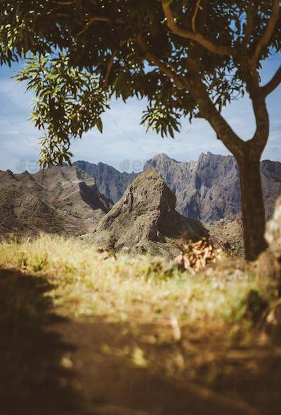 Amazing huge barren mountain range appearing on the horizon. Glowing sun the only mango tree