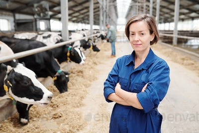 Young female worker of contemporary dairy farm