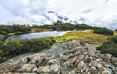 Alpine Scenery at Key Summit in New Zealand