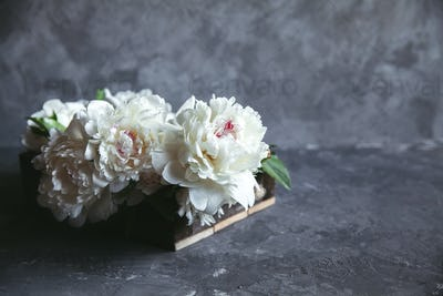 Peonies in wooden box