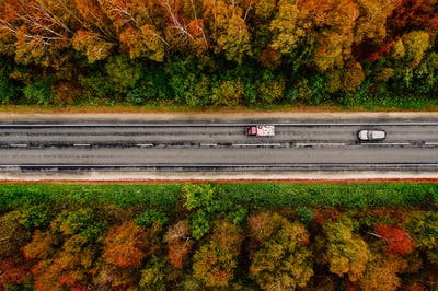 Aerial view of road and a car in autumn forest with red, yellow and orange leaves.