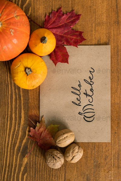 Overview of paper sheet surrounded by walnuts, red maple leaves and pumpkins
