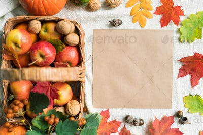Top view of blank paper among autumn leaves, acorns, walnuts and ripe apples