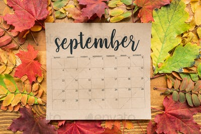 September calendar sheet with autumn leaves of red, yellow and green color