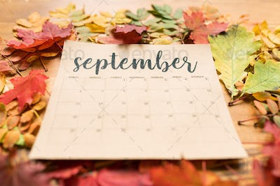 Calendar for September on table with red, yellow and green autumn leaves around