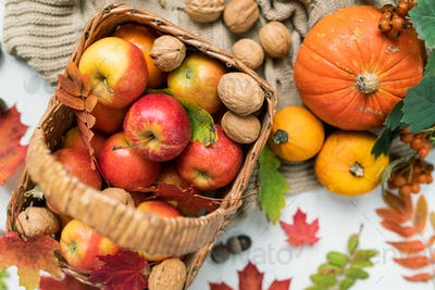 Overview of basket with red ripe apples, walnuts, pumpkins and autumn leaves