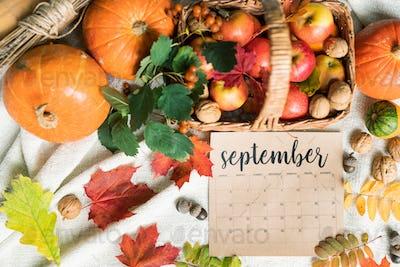 September harvest of apples and walnuts in basket, pumpkins, acorns and leaves