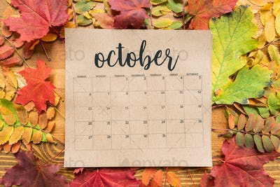 Overview of October calendar sheet and group of colorful autumn leaves