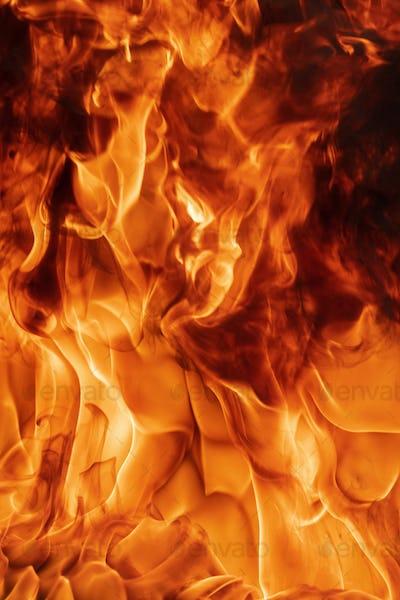 Blaze Red Fire Natural Background. Dangerous Firestorm Abstract Texture