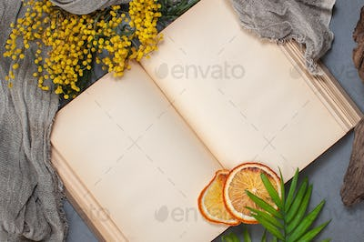 Open book with old blank pages. Background image with place for