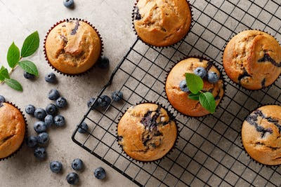 Blueberry muffins with fresh berries, top view