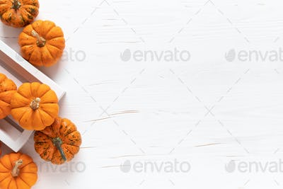 Small decorative pumpkins, halloween and thanksgiving background
