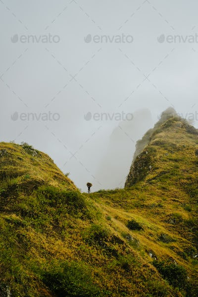 Local farmer carry a bale of hay on head along a sharp misty mountain ridge on Santo Antao Island