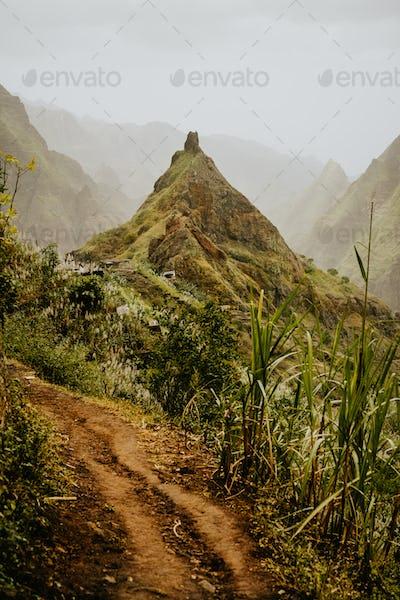 Trekking route 202 along sugarcane vegetation going across the Xo-Xo valley to Ribeira Grande. Santo