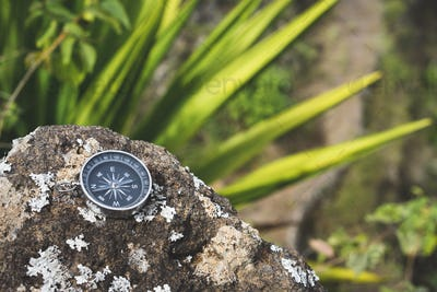 Navigation concept - Analogical compass laying on the rocky stone. Agave plant leaves in background