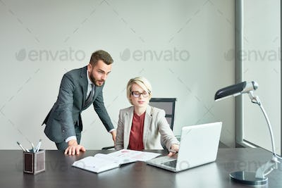 Successful Business People Working in Office