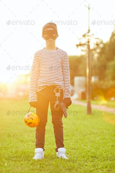 Halloween Bandit in Sunlight