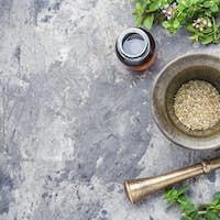 Fresh and dried oregano herb