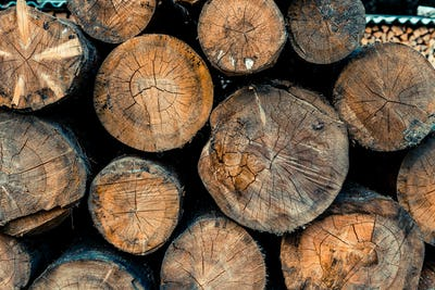Stacked wood logs for cutting and chopping