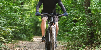 Male cyclist riding sport bike among trees