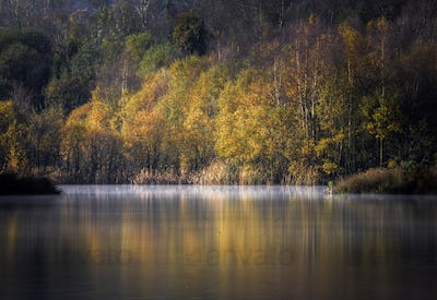 Autumn Forest Reflected in the Placid Waters of a Lagoon