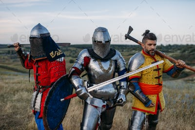 Knights with swords and axe poses in armour